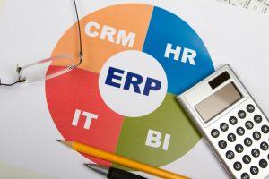 ERP Consultants