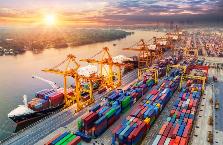 SAP Logistics Consultant